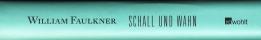 Faulkner - Schall und Wahn